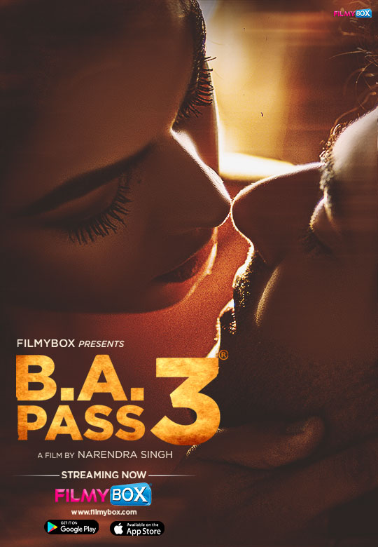 B.A.Pass 3 2021 Hindi 720p | 480p WEB-DL x264