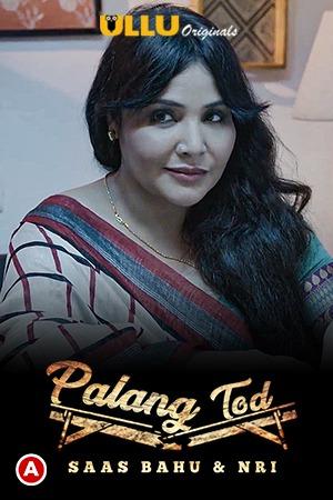 Saas Bahu & NRI (Palang Tod) 2021 Hindi Short Film 720p | 480p WEB-HD x264