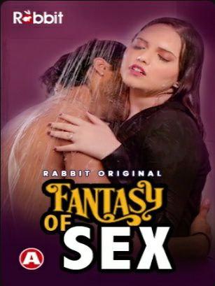 (18+)Fantasy Of Sex 2021 | S01E01 Rabbit Hindi Series WebRip x264 200MB Download
