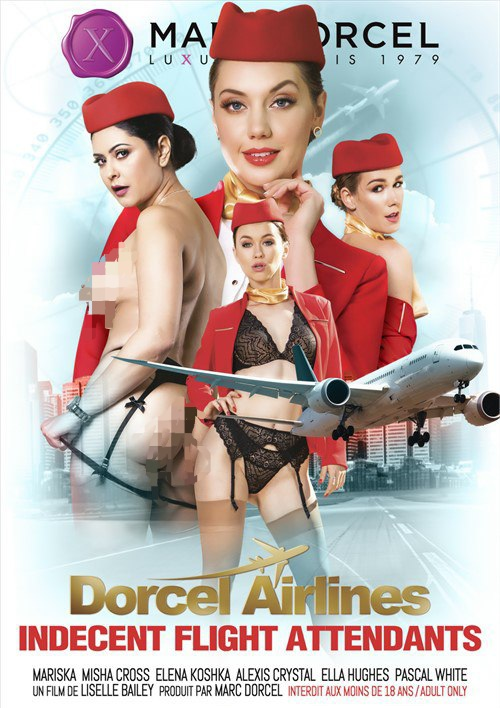 Indecent Flight Attendants 2009 English 720p   480p WEB-HD x264